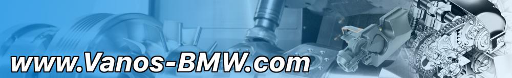 Vanos BMW Repair kit Disa BMW Repair kit Repair kits for car
