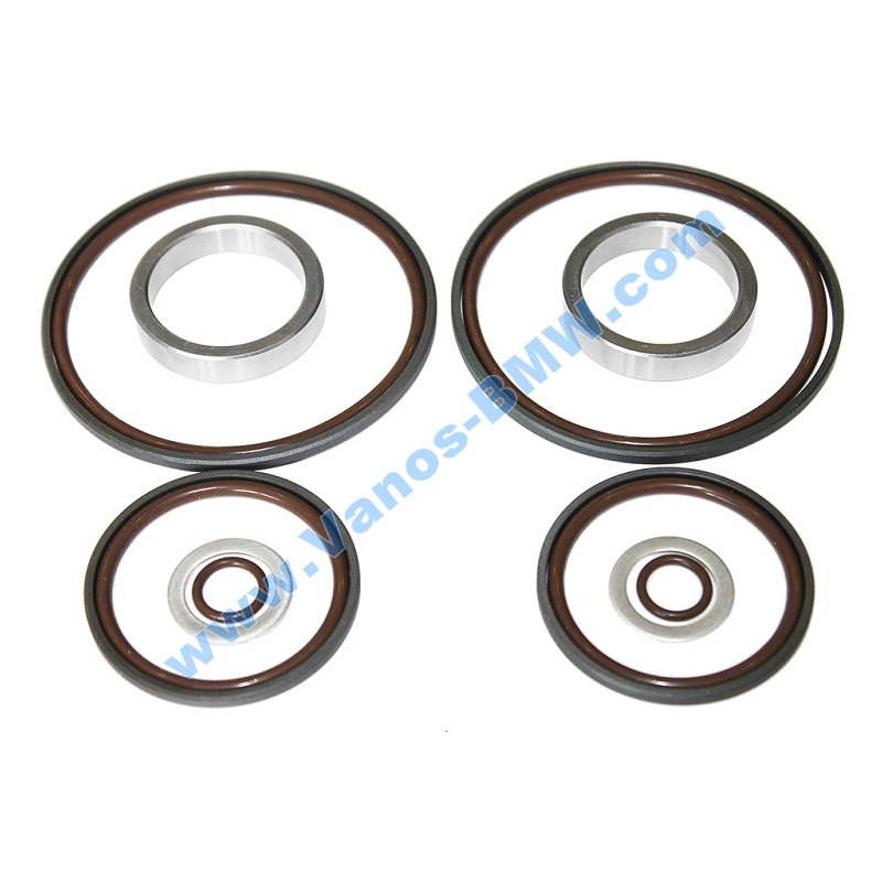 Double Vanos Seals and Rattle Repair Kit (6-cyl)